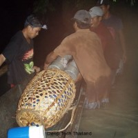 philipines_cave_diving_2007_18